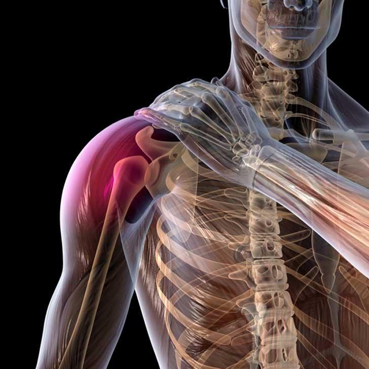 Treatments & Services - Shoulder Pain